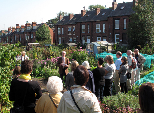 At Gledhow Valley Allotments Photo: Diane Howse