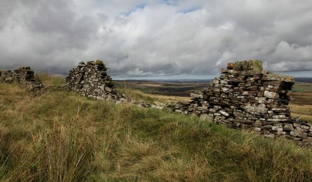 StoneWalls copy