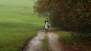 Harewood_South_CarriageDrive_Riding_MVI_9957